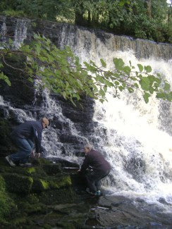 Fowleys Falls